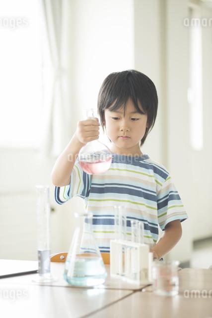 実験をする小学生の写真素材 [FYI04553677]