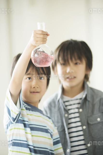 実験をする小学生の写真素材 [FYI04553681]