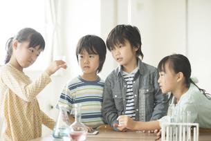 実験をする小学生の写真素材 [FYI04553684]