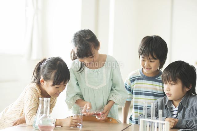 実験をする小学生の写真素材 [FYI04553686]