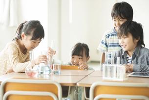 実験をする小学生の写真素材 [FYI04553688]