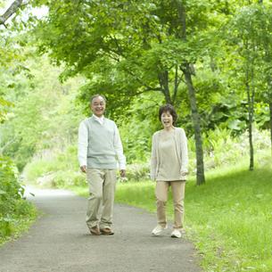 新緑の中で微笑むシニア夫婦の写真素材 [FYI04553773]