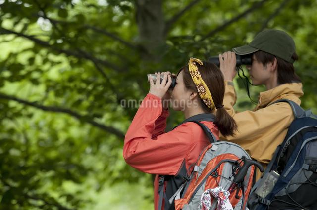 バードウォッチングをするカップルの写真素材 [FYI04554815]