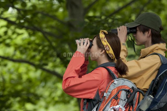 バードウォッチングをするカップルの写真素材 [FYI04554816]