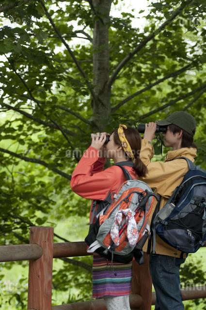 バードウォッチングをするカップルの写真素材 [FYI04554817]