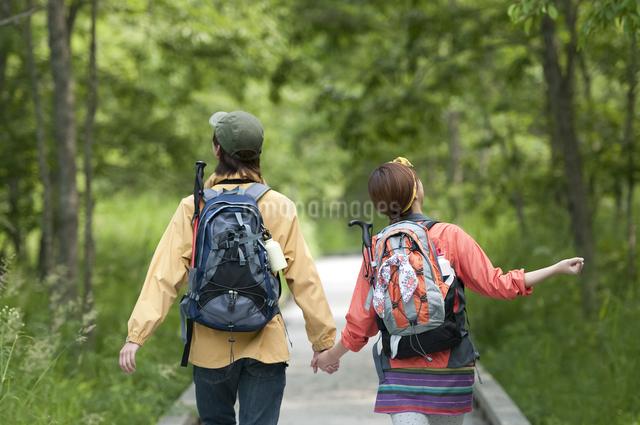 トレッキングをするカップルの後姿の写真素材 [FYI04554862]