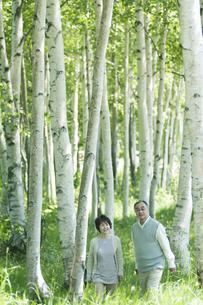 森林の中を歩くシニア夫婦の写真素材 [FYI04554912]