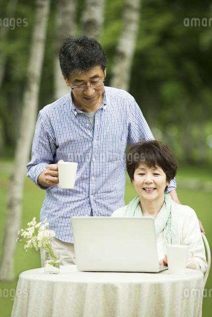 パソコンをするシニア夫婦の写真素材 [FYI04555171]