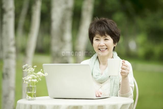 パソコンをするシニア女性の写真素材 [FYI04555180]