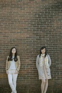若い女性のポートレートの写真素材 [FYI04556208]