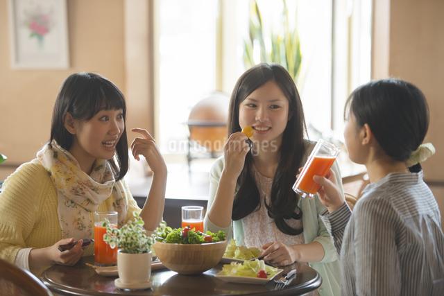 カフェで談笑をする女性の写真素材 [FYI04556248]