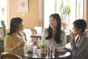 カフェで談笑をする女性の写真素材 [FYI04556263]