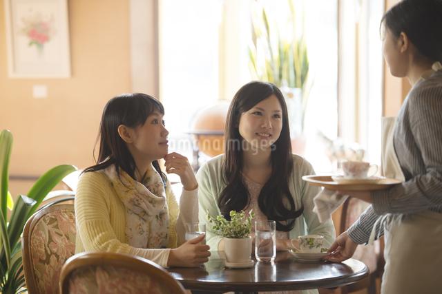 カフェで店員と談笑をする女性の写真素材 [FYI04556272]