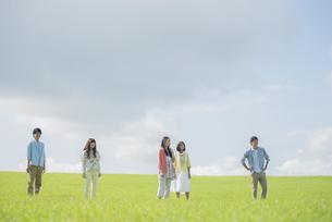 草原に佇む大学生の写真素材 [FYI04556440]