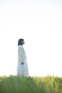 草原で空を見上げる女性の写真素材 [FYI04556490]