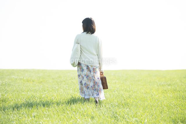 草原を歩く女性の後姿の写真素材 [FYI04556550]