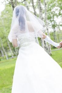 手をつなぐ花嫁の後姿の写真素材 [FYI04556700]