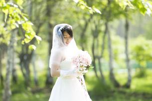 ブーケを持ち微笑む花嫁の写真素材 [FYI04556711]