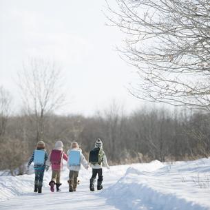 雪道を歩く小学生の後姿の写真素材 [FYI04556862]