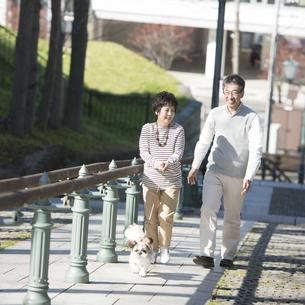 犬の散歩をするシニア夫婦の写真素材 [FYI04557137]