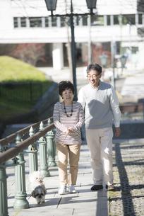 犬の散歩をするシニア夫婦の写真素材 [FYI04557138]
