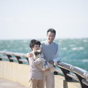 犬を抱き微笑むシニア夫婦の写真素材 [FYI04557143]