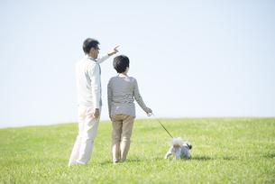 草原で犬の散歩をするシニア夫婦の後姿の写真素材 [FYI04557192]
