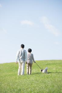 草原で犬の散歩をするシニア夫婦の後姿の写真素材 [FYI04557210]