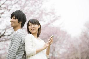 桜の前で音楽を聴くカップルの写真素材 [FYI04557268]