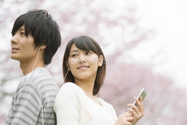 桜の前で音楽を聴くカップルの写真素材 [FYI04557269]