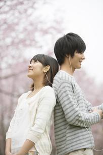 桜の前で音楽を聴くカップルの写真素材 [FYI04557270]