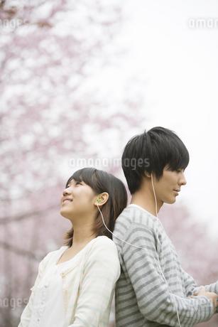 桜の前で音楽を聴くカップルの写真素材 [FYI04557272]