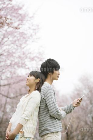 桜の前で音楽を聴くカップルの写真素材 [FYI04557273]