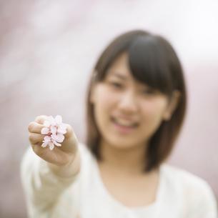 桜を持ち微笑む女性の手元の写真素材 [FYI04557292]