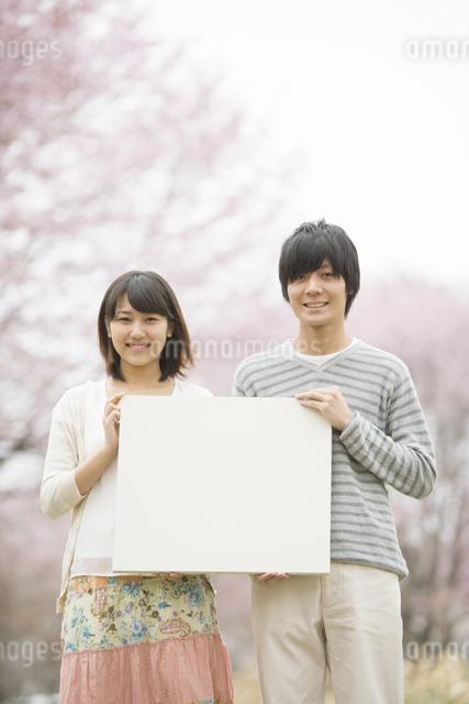 桜の前でメッセージボードを持つカップルの写真素材 [FYI04557313]
