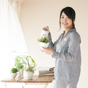 植物に水やりをする女性の写真素材 [FYI04557505]