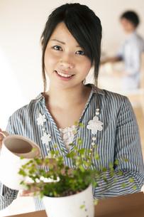 植物に水やりをする女性の写真素材 [FYI04557507]