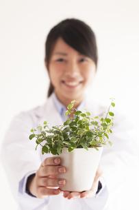観葉植物を持つ研究者の手元の写真素材 [FYI04557771]