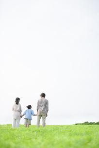 草原で手をつなぐ家族の後姿の写真素材 [FYI04558060]