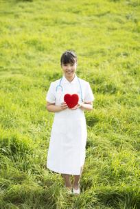 草原でハートを持つ看護師の写真素材 [FYI04558152]