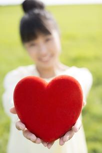 草原で赤いハートを持つ女性の手元の写真素材 [FYI04558183]