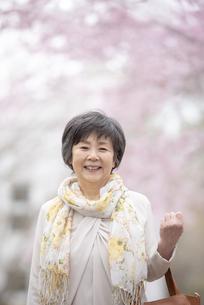 桜の中で微笑むシニア女性の写真素材 [FYI04558356]