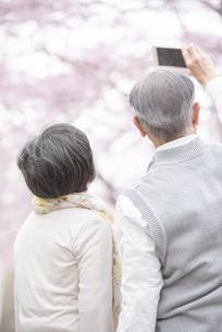 スマホで撮影をするシニア夫婦の後ろ姿の写真素材 [FYI04558361]