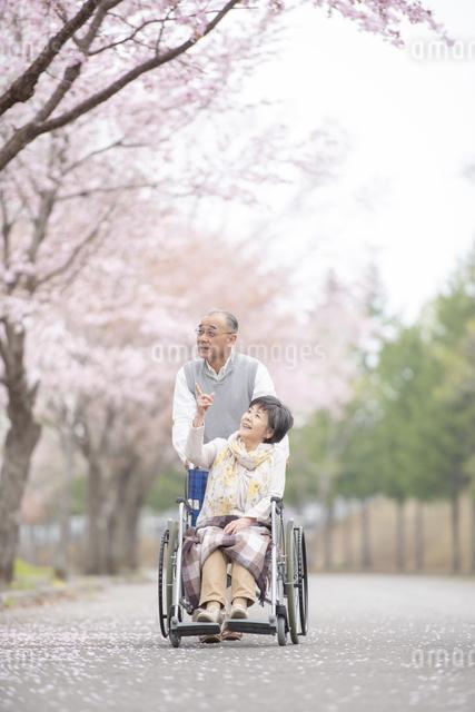 車椅子で散歩するシニア夫婦の写真素材 [FYI04558362]