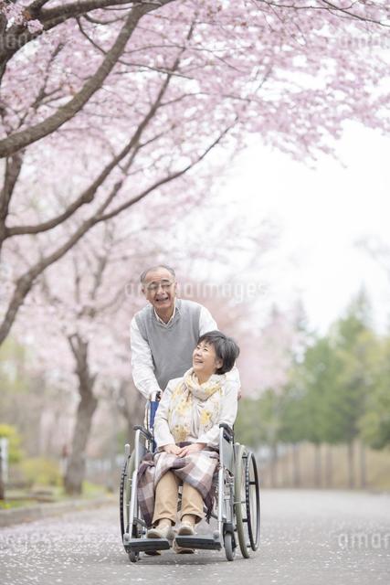 車椅子で散歩するシニア夫婦の写真素材 [FYI04558363]