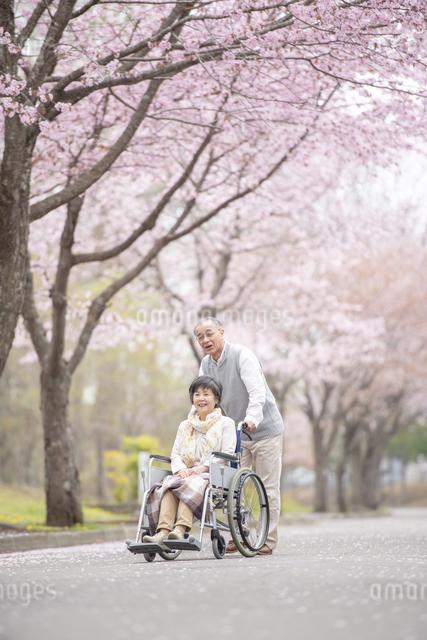 車椅子で散歩するシニア夫婦の写真素材 [FYI04558364]