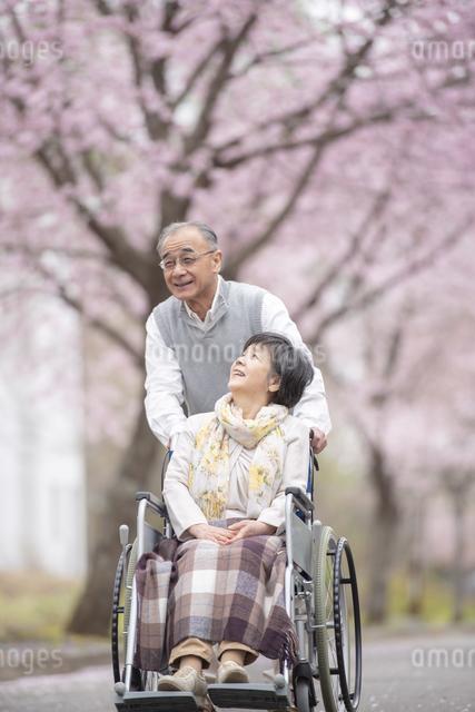 車椅子で散歩するシニア夫婦の写真素材 [FYI04558366]