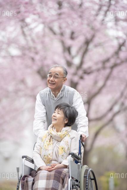 車椅子で散歩するシニア夫婦の写真素材 [FYI04558368]