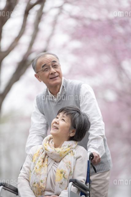 車椅子で散歩するシニア夫婦の写真素材 [FYI04558369]
