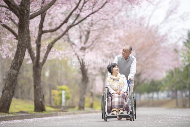 車椅子で散歩するシニア夫婦の写真素材 [FYI04558372]